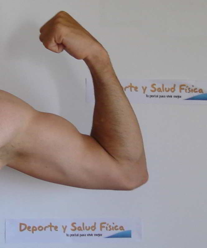 Ejercicios de fuerza. Aumenta tu metabolismo para perder grasa. Fuente imagen www.deporteysaludfisica.com