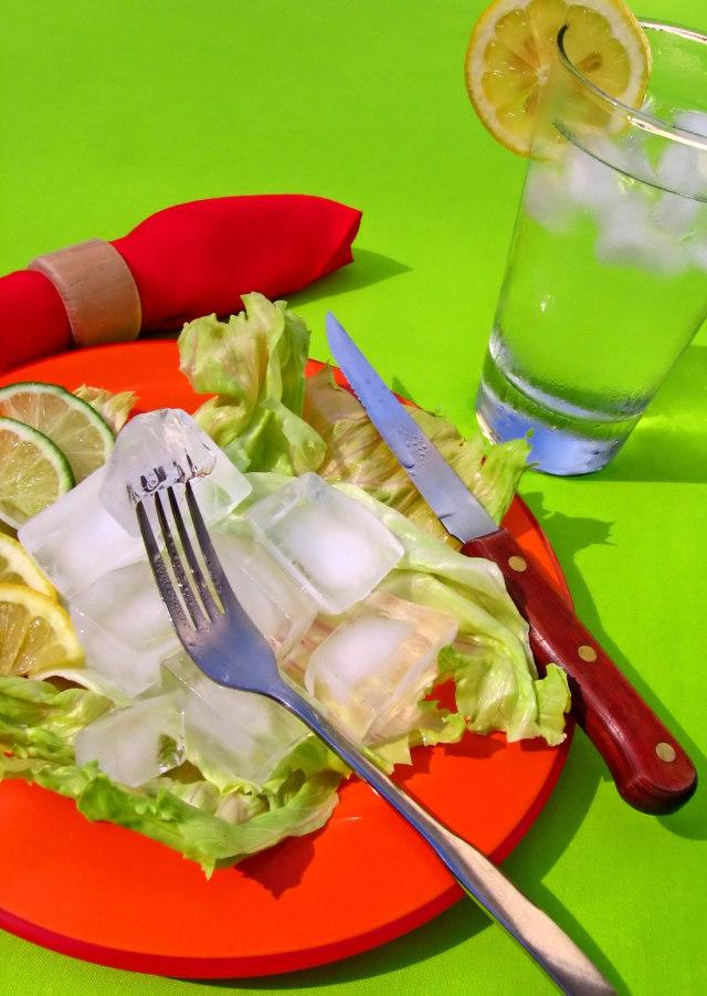 Alimentos que no engordan en www.deporteysaludfisica.com fuente imagen www.sxc.hu 537457_the_ultimate_diet_plan.jpg