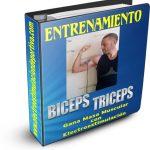 Programas de entrenamiento de bíceps y tríceps con electroestimulación