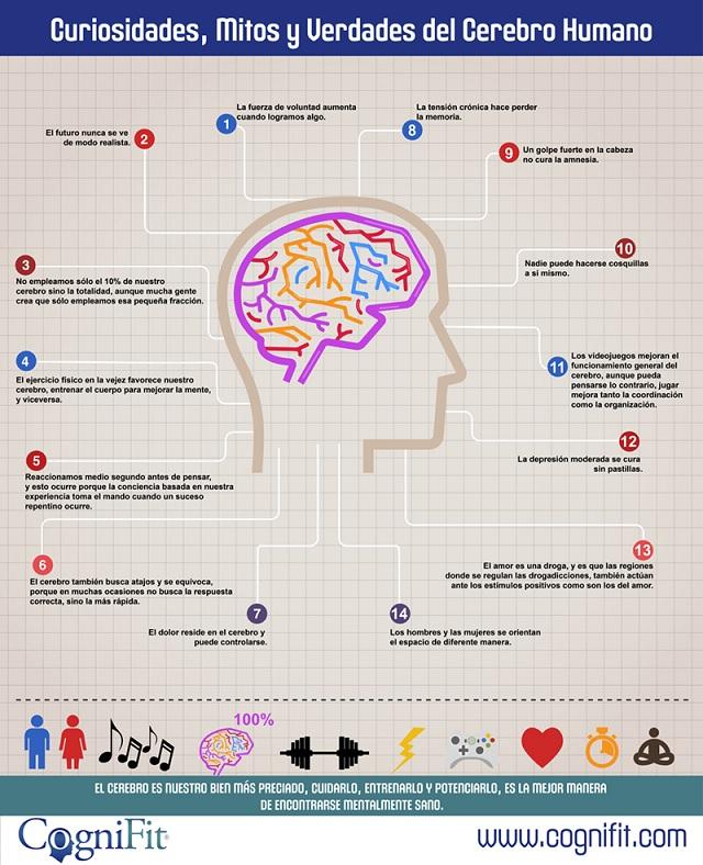 Curiosidades y mitos del cerebro humano