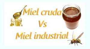 diverencias miel cruda y miel industrial